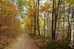 Autumn in the Ardennes (4).jpg