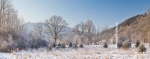 Ardennes - Winter - Snow (15).jpg
