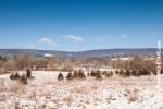 Ardennes - Winter - Snow (8).jpg