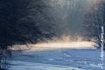 Ardennes - Winter - Snow (27).jpg
