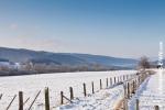 Ardennes - Winter - Snow (24).jpg