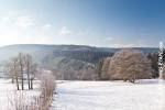 Ardennes - Winter - Snow (20).jpg