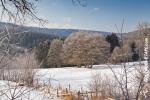 Ardennes - Winter - Snow (18).jpg