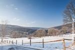 Ardennes - Winter - Snow (17).jpg